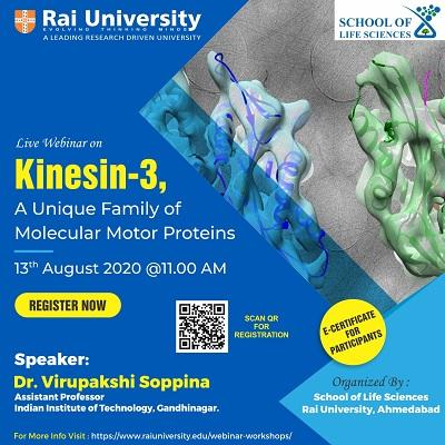 Webinar on kinesin-3 on 13 August 2020